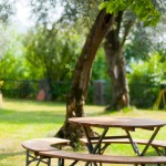 parco-giardino-vista-lago (15)