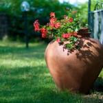 Giardino fiorito da aprile ad ottobre