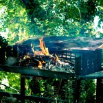 Barbecue und Pavillon im Park