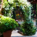 Park with ornamental garden